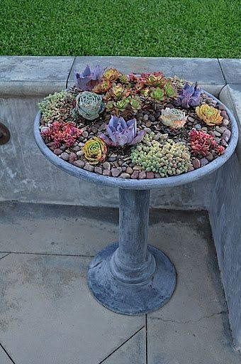 Plant a garden in a birdbath..cute!