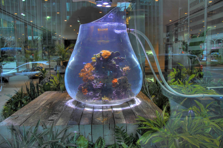 "An Amazing Art Installation – The Aquarium Called ""Land Mind"""