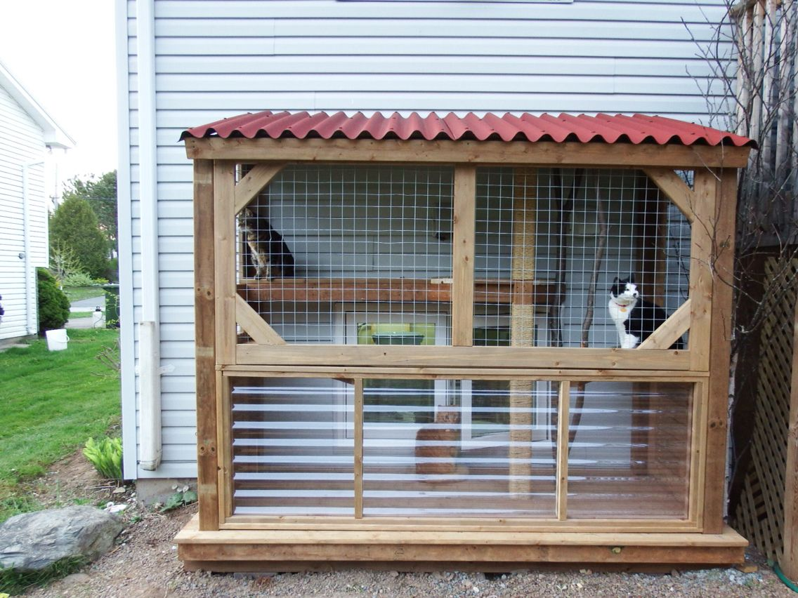 Cage Exterieur Chat Our Diy Catio Cat Condo Pinterest Chats Animal Et