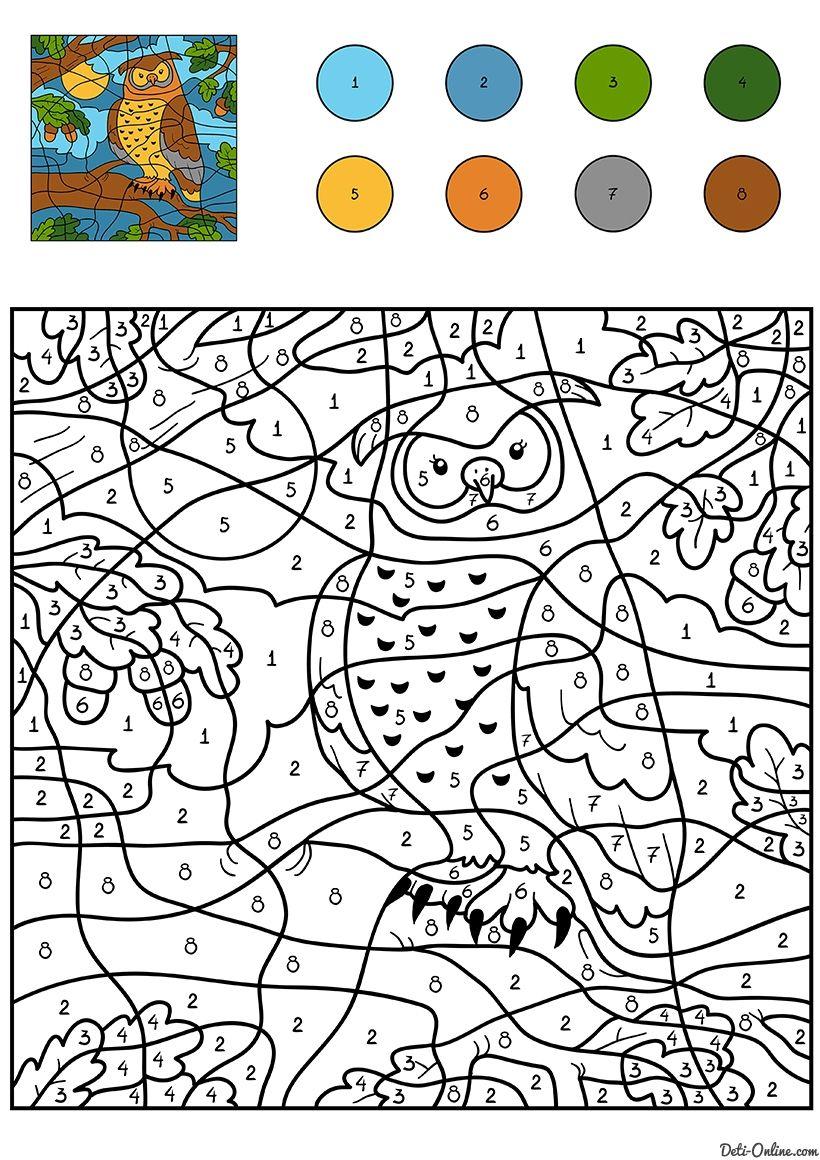 Раскраска Сова по цифрам | Книжка-раскраска, Раскраски ...
