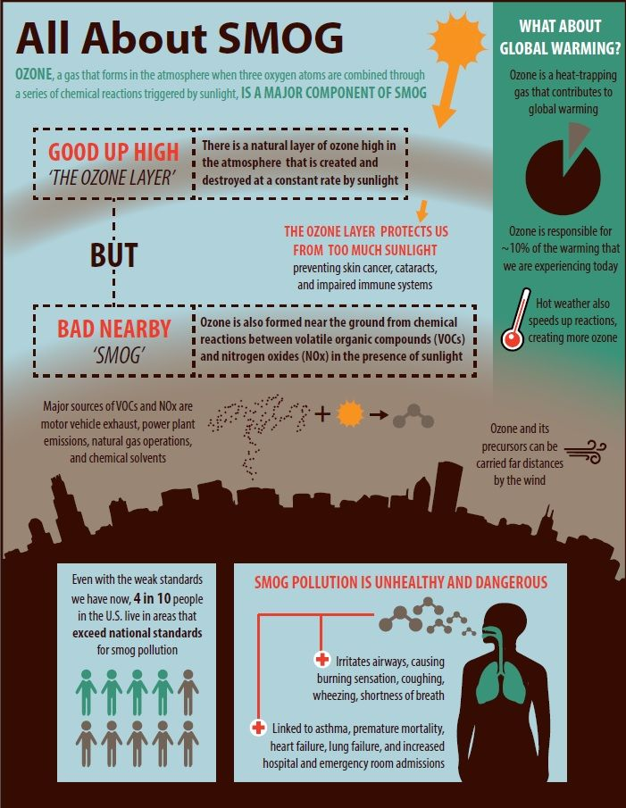 All About Smog Infographic Infographic Air Pollution Global Warming