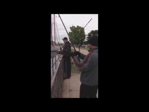 Striper video pics 86