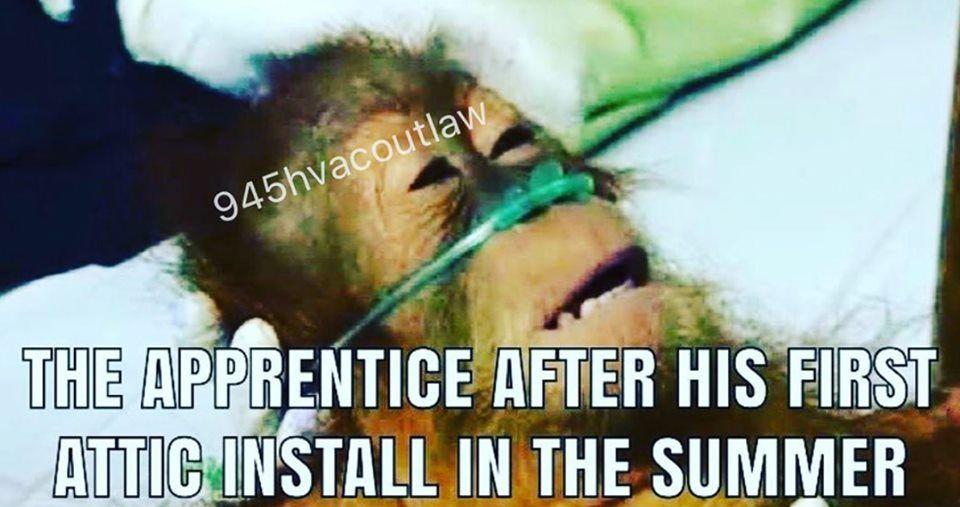 Electrician Jokes Humor Memes Jokes Funny Memes Good Jokes
