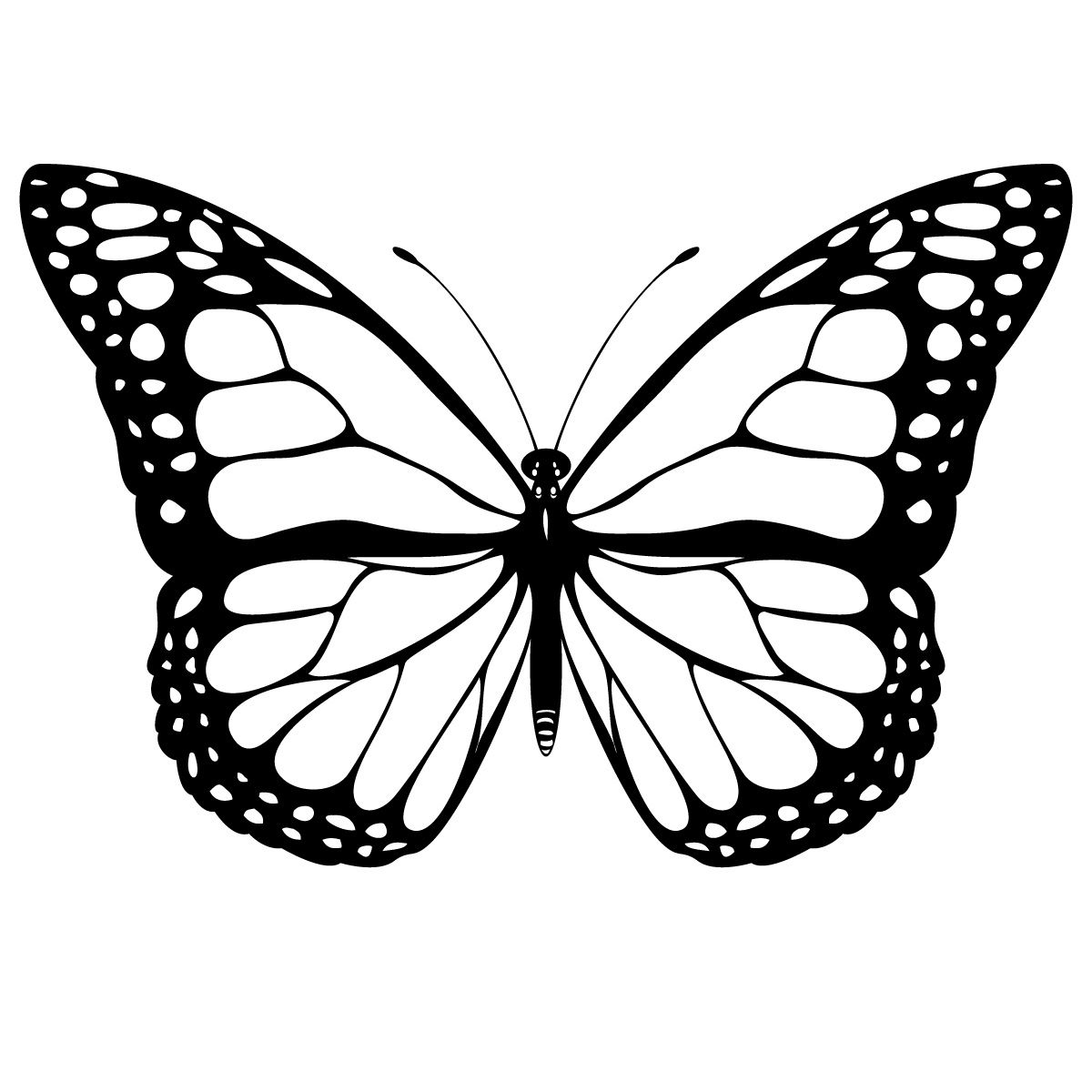 Colouring in pages for girls butterflies - If You Are Located In The Cleveland Area And Looking For Butterfly Template Printable