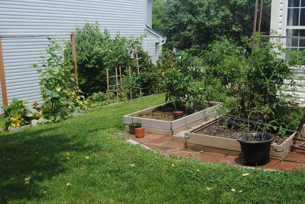 Incredible Modern Garden Planting Scheme With Raised