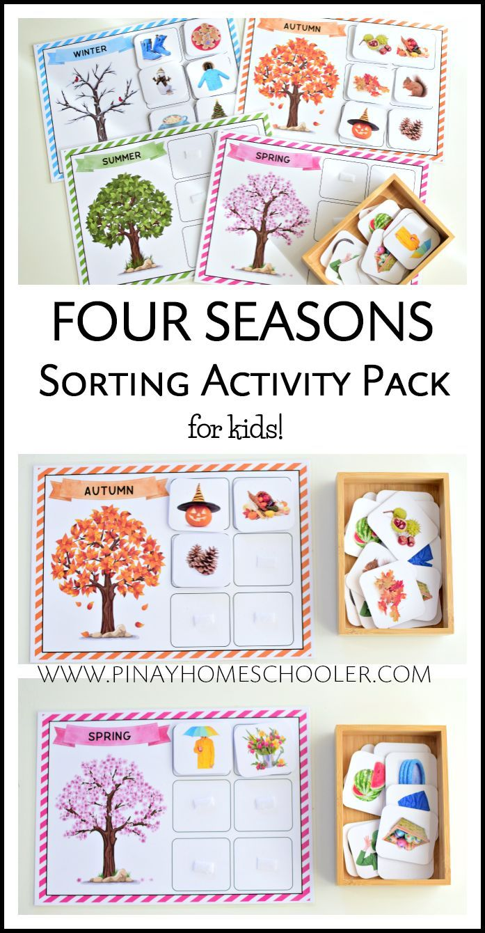 four seasons sorting activity real images montessori at home sorting activities seasons. Black Bedroom Furniture Sets. Home Design Ideas