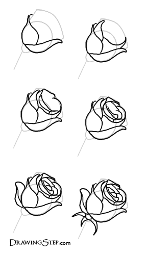 drawing of a rose Bullet Journals Pinterest Rose Draw and