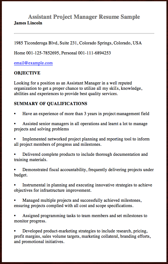 here is the assistant project manager resume sample you