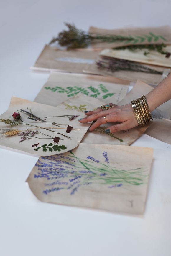 Decorating With Homemade Botanical Wallpaper | Free People Blog