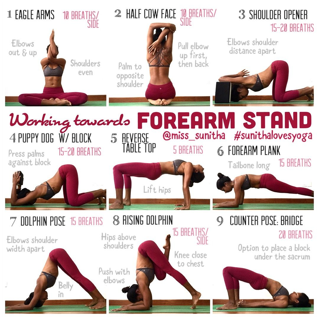 Yoga Poses For Forearm Stand Pinchamayurasana Video Available On Ig Miss Sunitha Sunithalovesyoga Forearm Stand Yoga Help Yoga Inversions