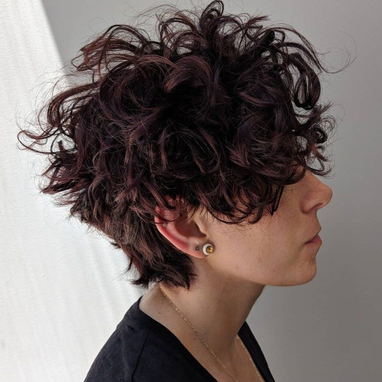 45+ Curly pixie cut ideas