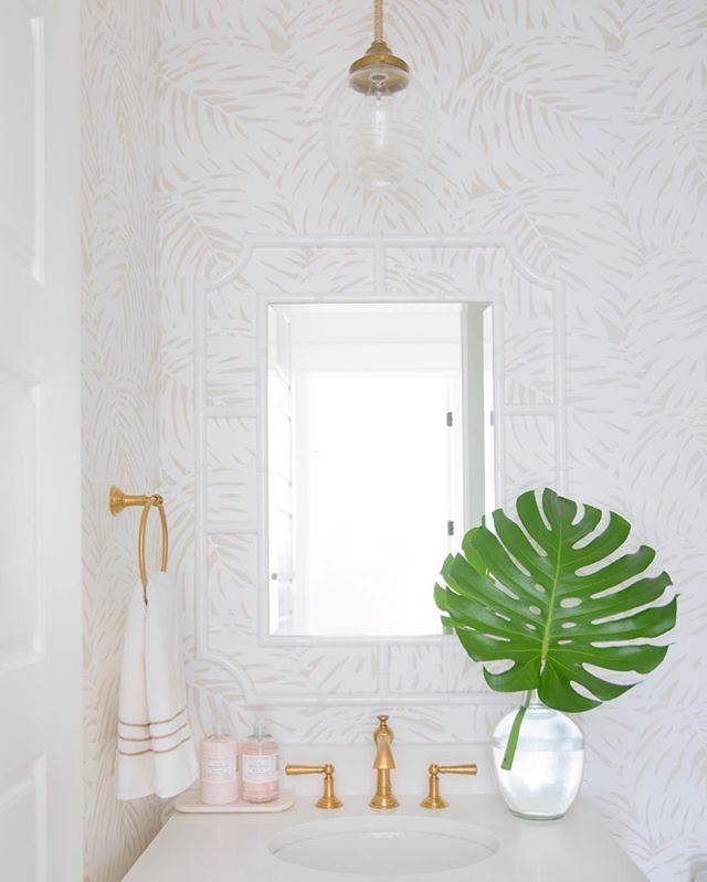 Photo of Palm Wallpaper