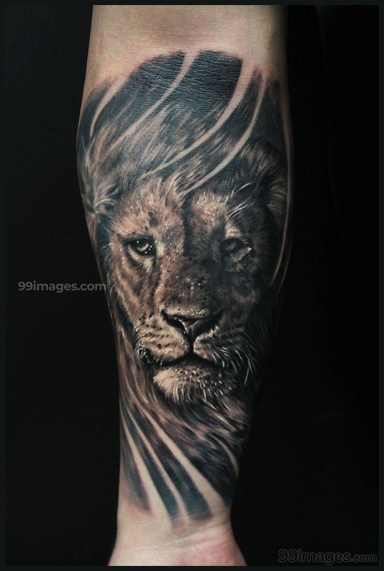 Best Forearm Tattoos Hd Photos 11085 Forearmtattoos Tattoos Lion Forearm Tattoos Lion Tattoo Design Lion Tattoo Sleeves