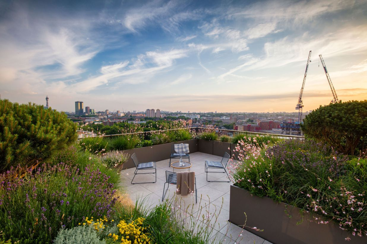 The Best Garden Designs And Landscapes Have Been Celebrated At The Sgd Awards Roof Garden Garden Design Pictures Garden Design