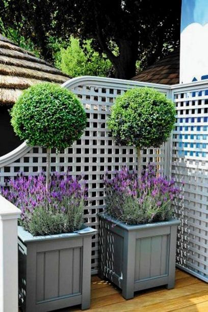 Photo of 10 Great Planter Ideas and Products – Award Winning Contemporary Concrete Planters and Sculpture by Adam Christopher