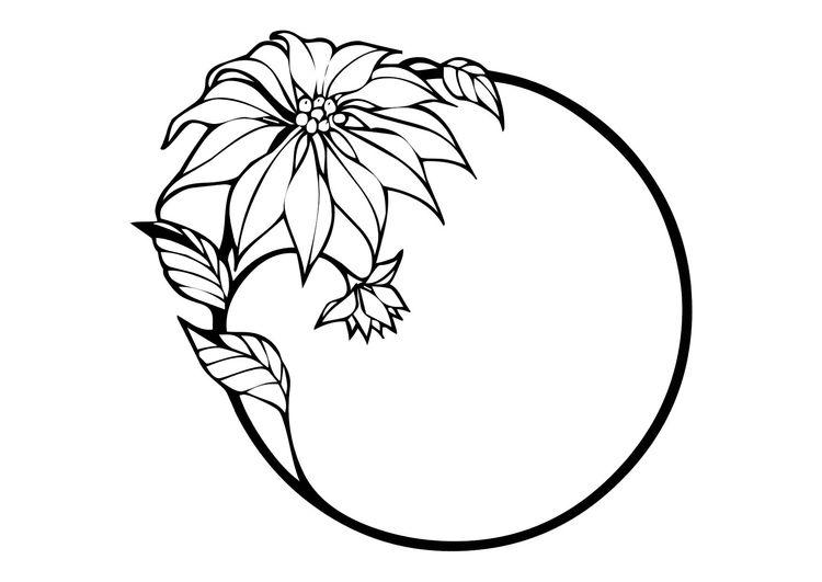 Malvorlage Christstern   Flower drawing, Clip art borders ...