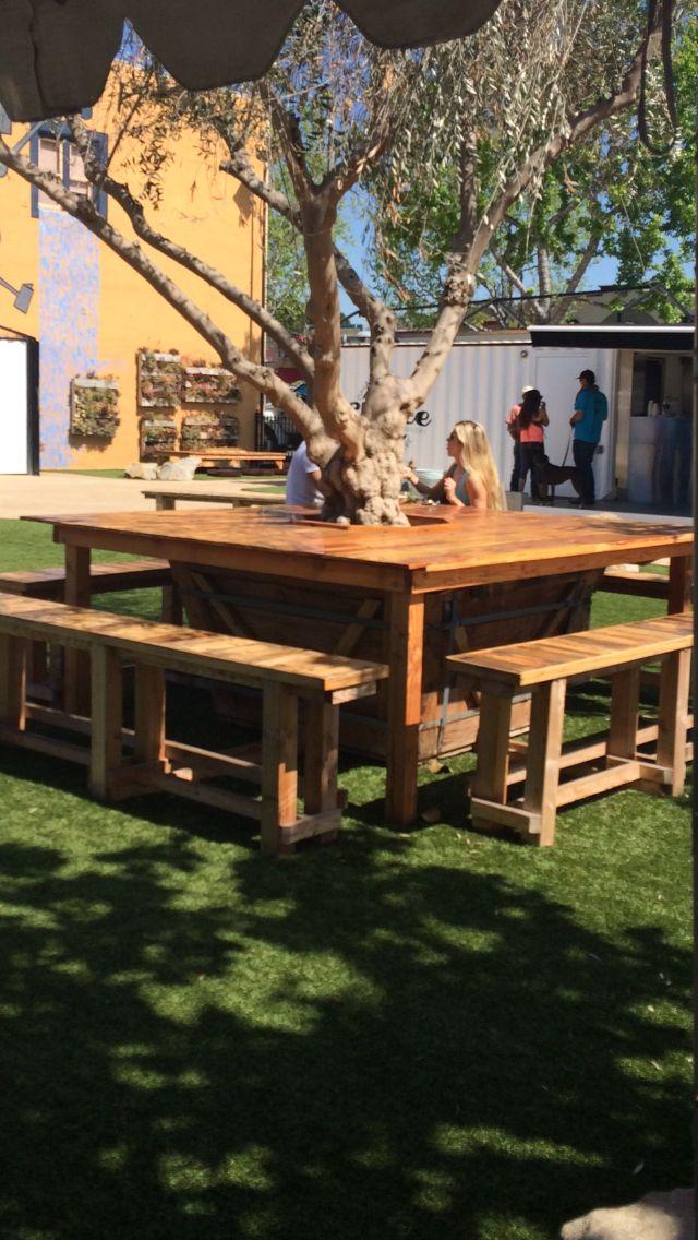 Table Built Around A Tree How Cool Garden Bench Diy Diy