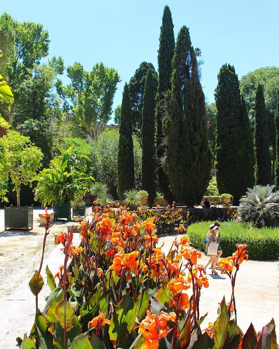 Le jardin des plantes de montpellier est un jardin - Le jardin des plantes montpellier ...