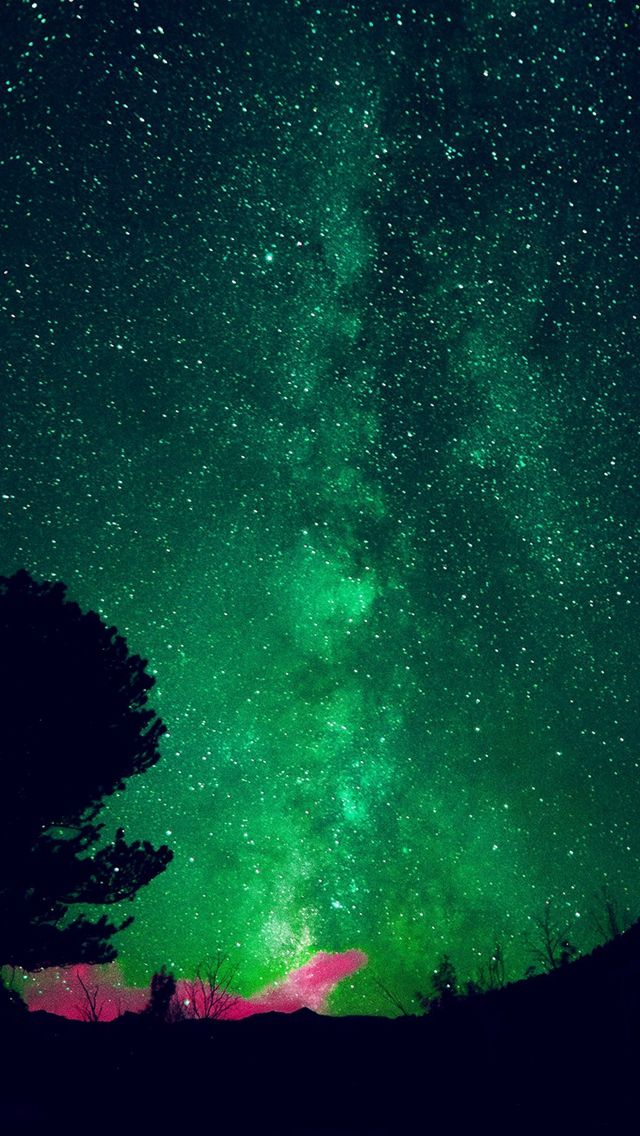 Aurora Night Sky Star Space Nature Green iPhone 5s