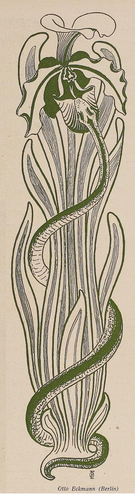 Jugend, 1900 Ornament by Otto Eckmann