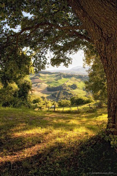 Landscape Photography Tips: indigodreams #CountryLandscape