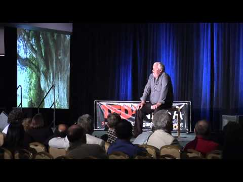 An archive of ancient tree genes | David Milarch | TEDxNASA@SiliconValley - YouTube