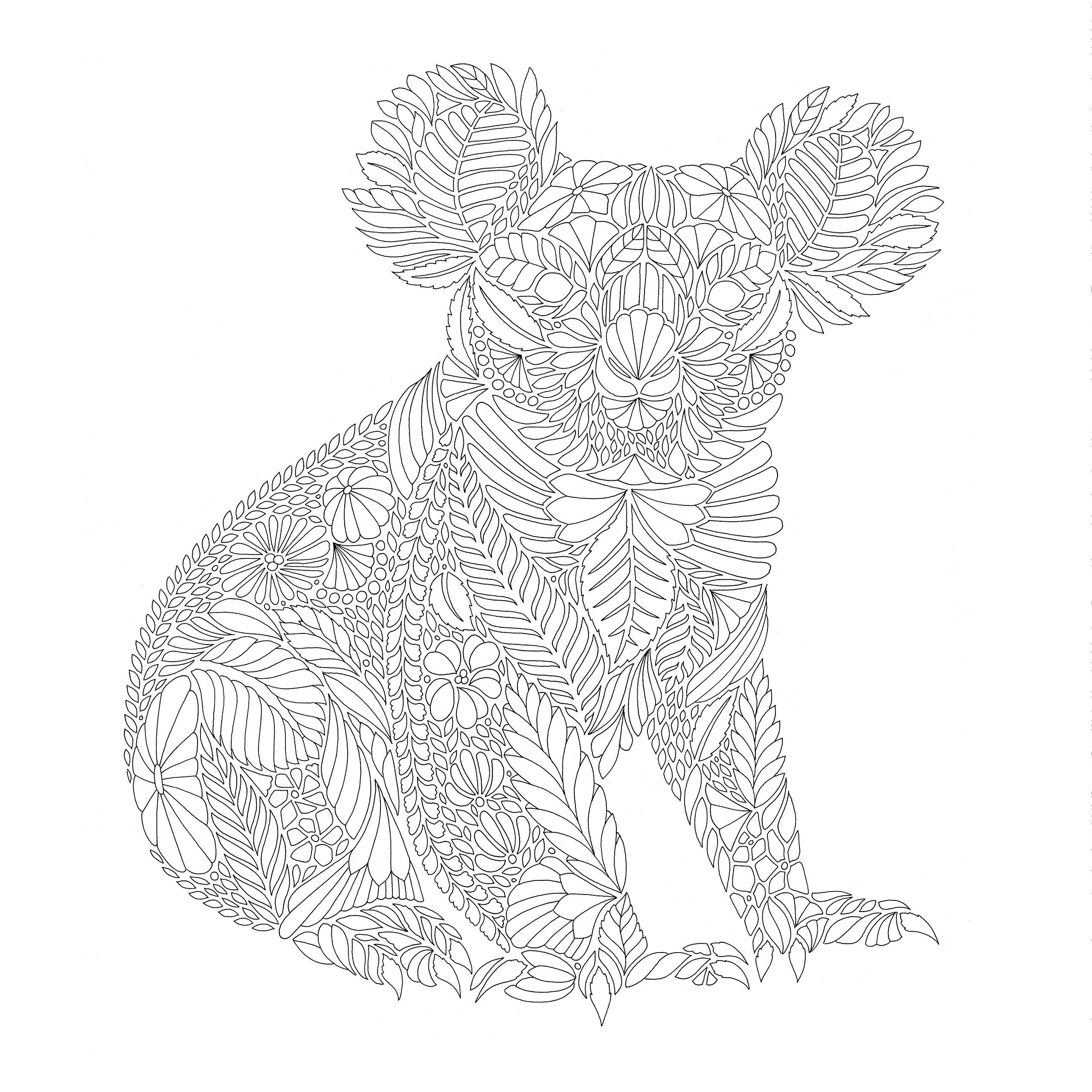 animal kingdom coloring pages | Beautiful Birds and Treetop Treasures by Millie Marotta ...