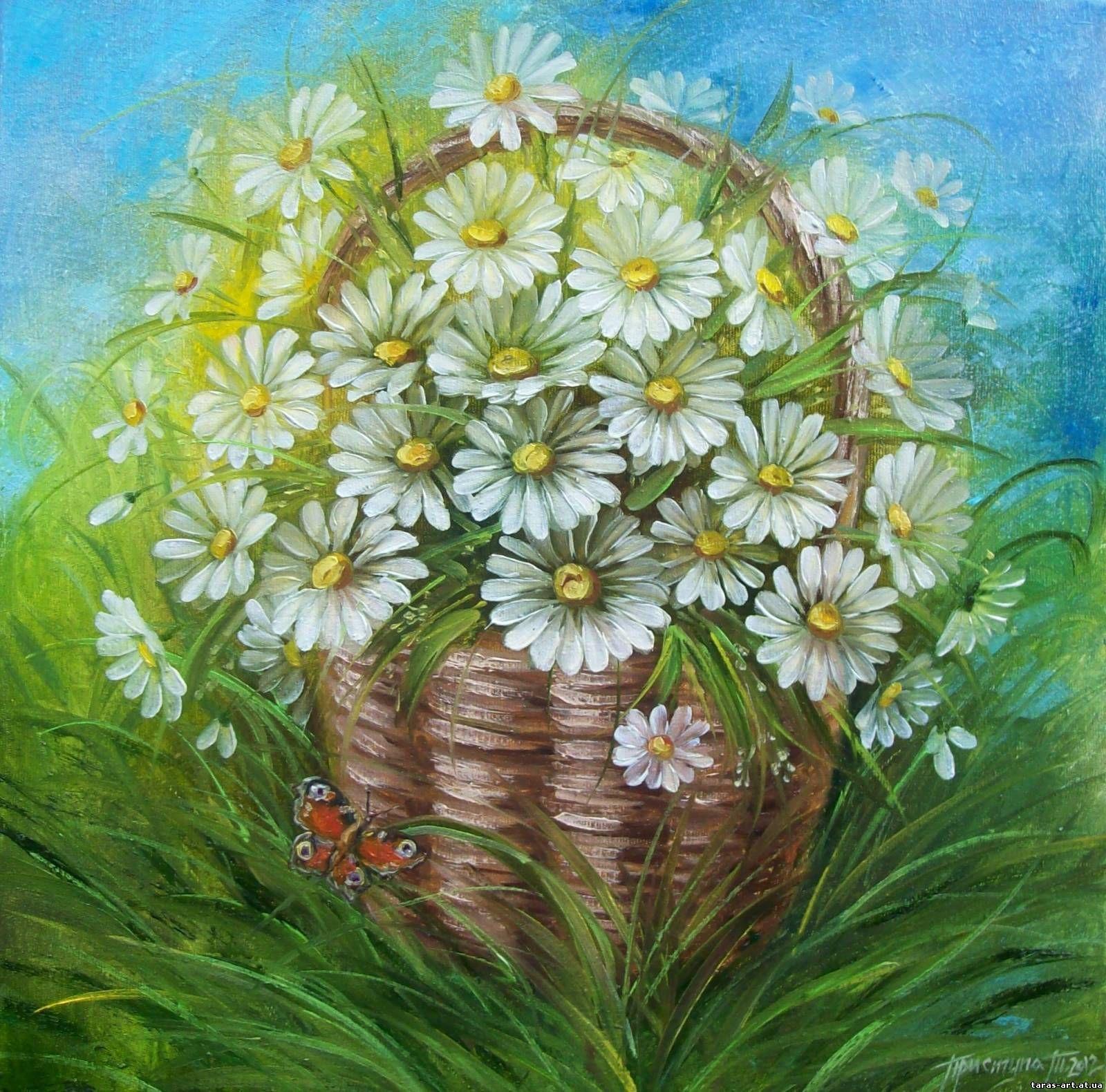 Картинки композиции цветов ромашки нарисованные