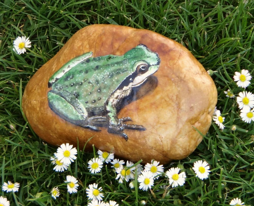 Frosch Frosch Bemalter Stein Briefbeschwerer Garten Balkon Terrasse Ebay In 2020 Steine Bemalen Frosch Steine