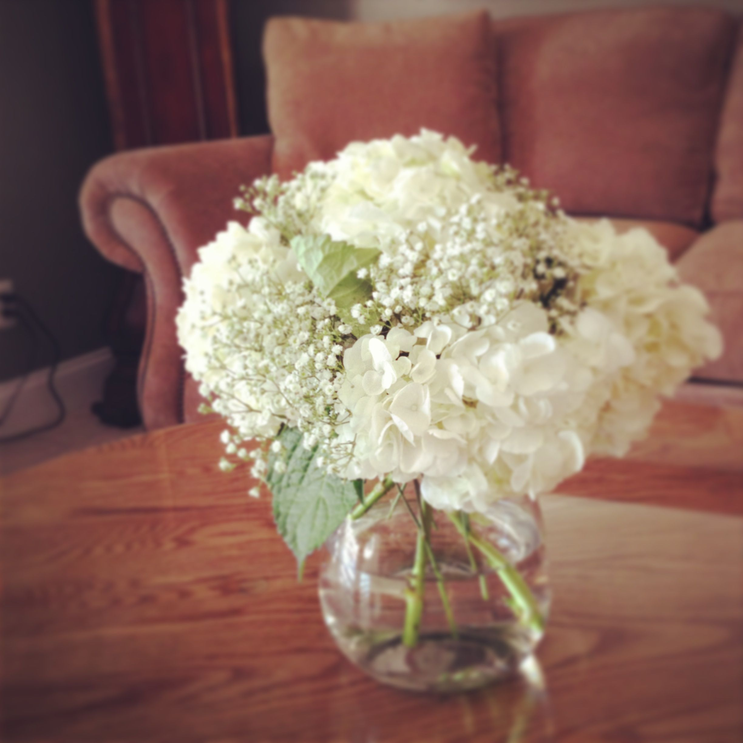 Wedding White Hydrangea: White Hydrangea And Baby's Breath