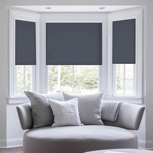 Classic Fabric Roller Window Shades Selectblinds Com Living Room Blinds Curtains With Blinds House Blinds