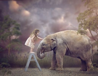 Creative Composite Images - Tara Lesher Photography