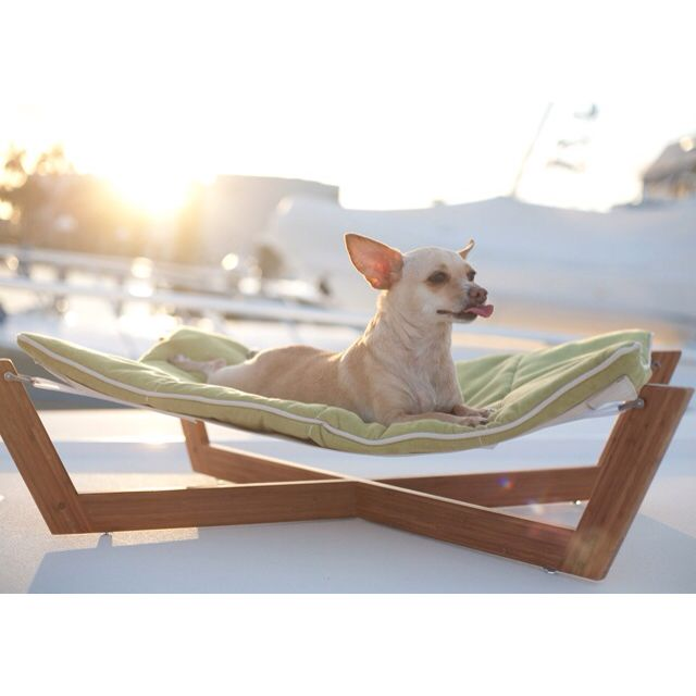 grey hammock bed images bambu more beds dog