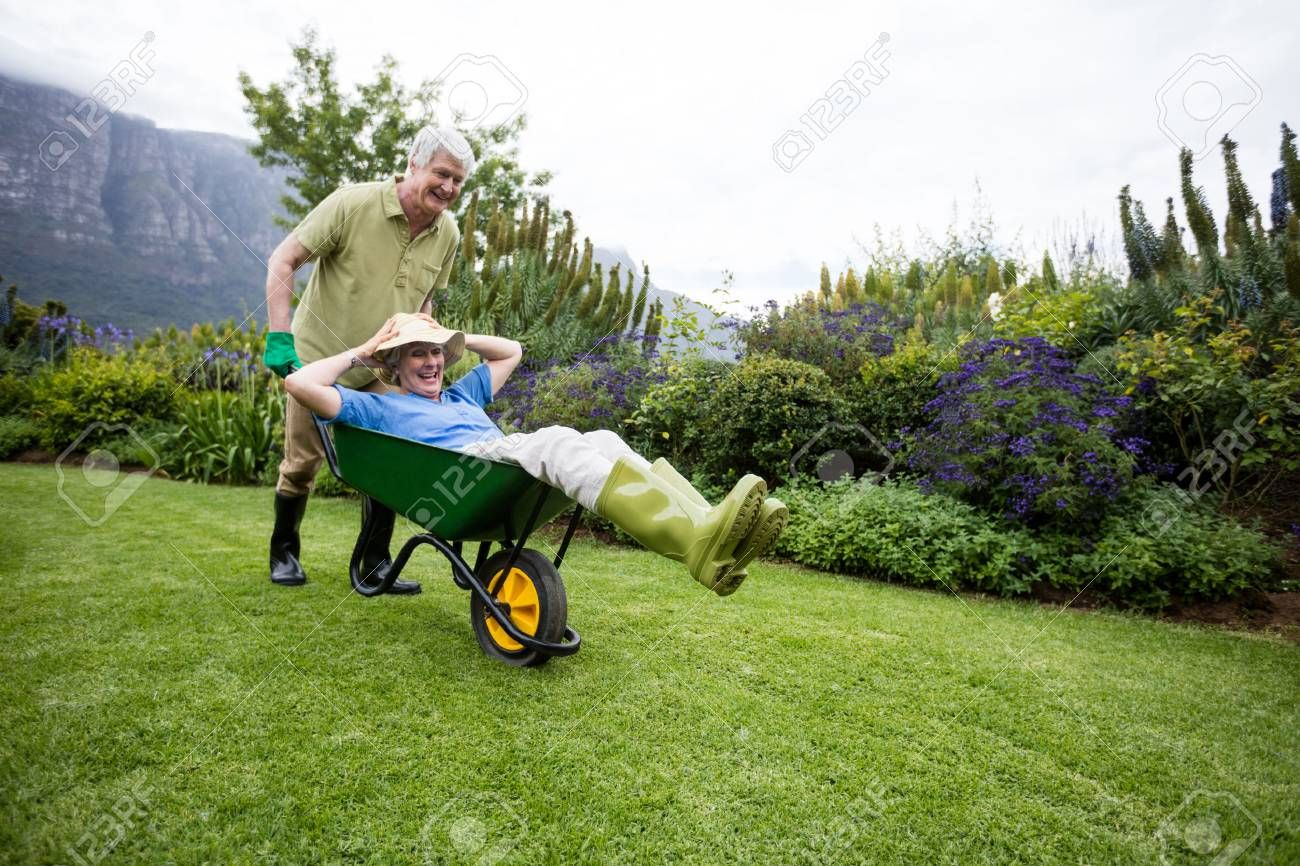Senior man carrying his partner in wheelbarrow in lawn Stock Photo
