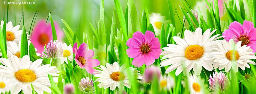 Flowers Of Spring Facebook Cover Coverlayout Com Spring Cover