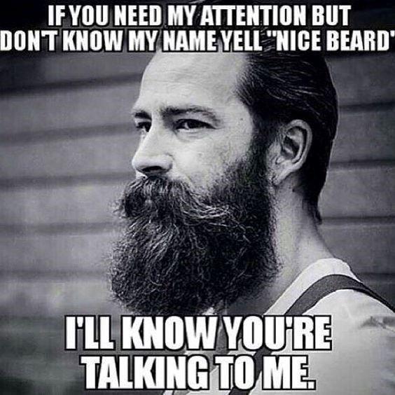 Top 60 Best Funny Beard Memes Beard Humor Beard Memes Funny Beard Memes