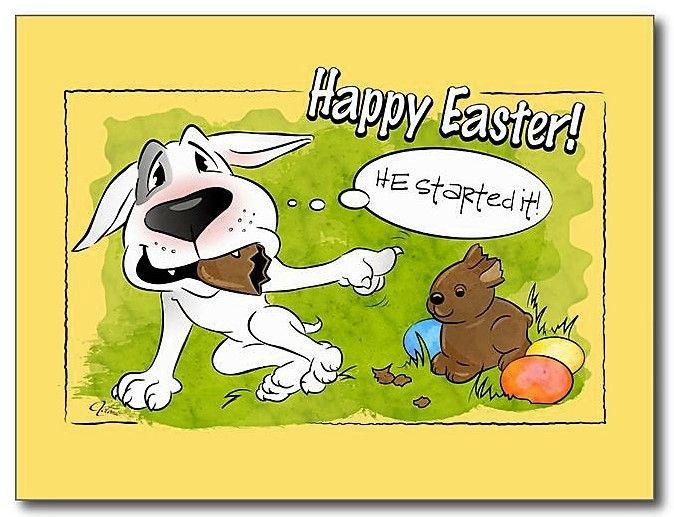 #Bullterrier #Easter