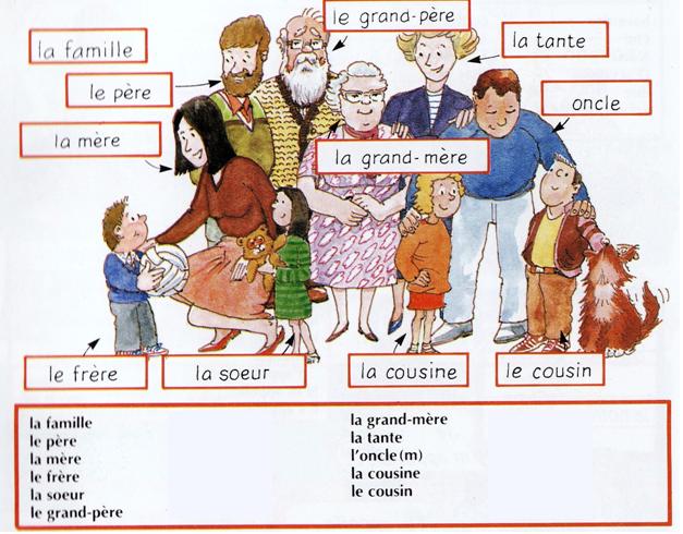 Top La famille. Niveau A1/A2 | La famille, Familles et Vocabulaire CY21