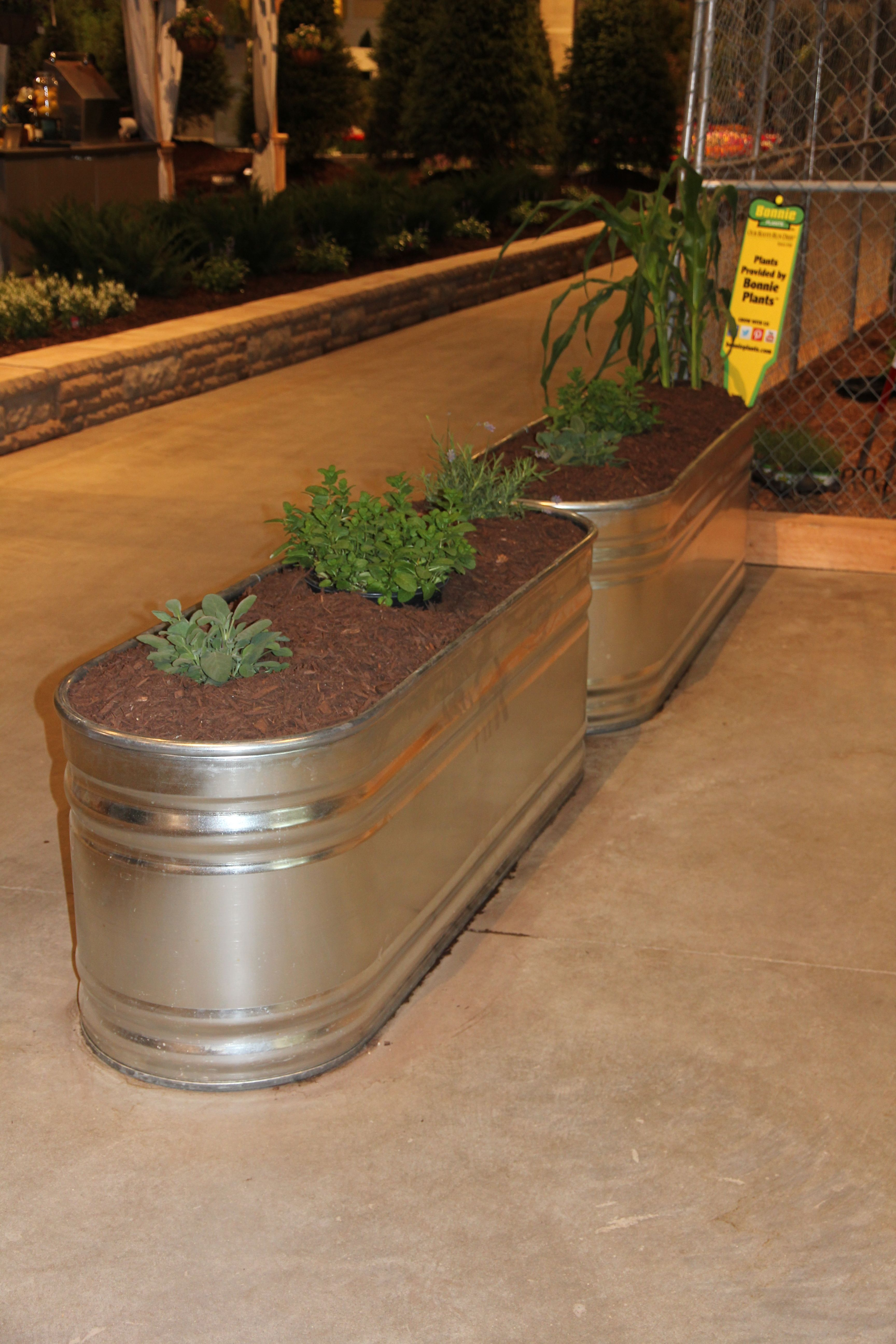 Another example of a water trough planter. Would be a good