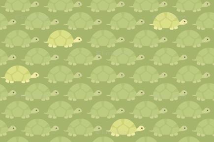 Turtles background, etc | Turtle Theme | Turtle background, Turtle