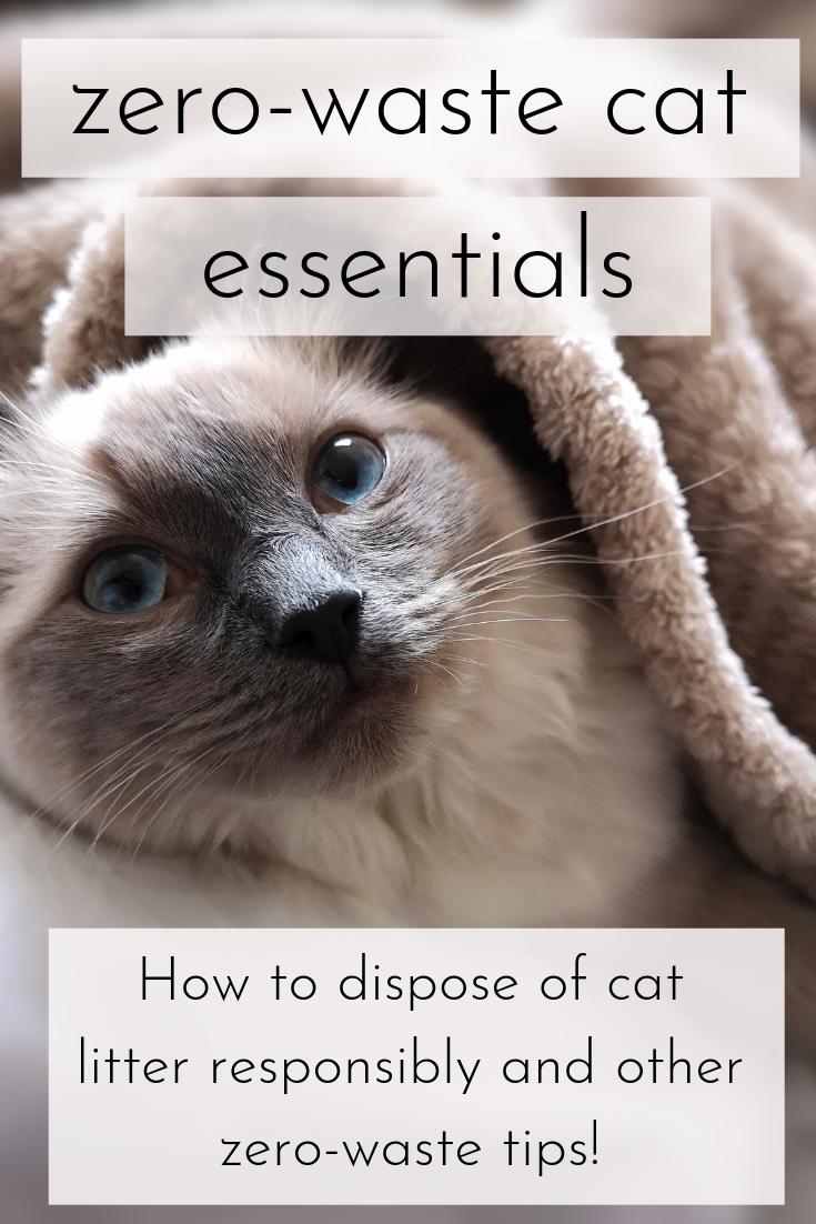 Zero Waste Cat Routine the Ultimate Guide ZERO WASTE