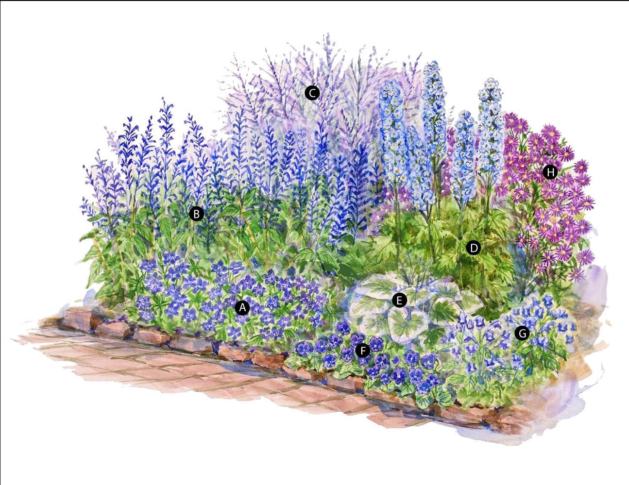 Blue Theme Garden Plan Create A Soothing All In Partly Grow Earth