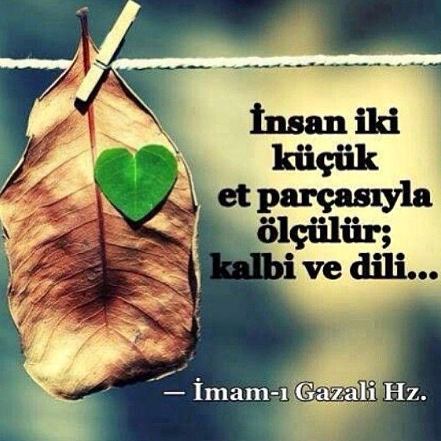 Bahar Akca Baharakca Instagram Photos Websta Rumi Rumi Love Rumi Quotes