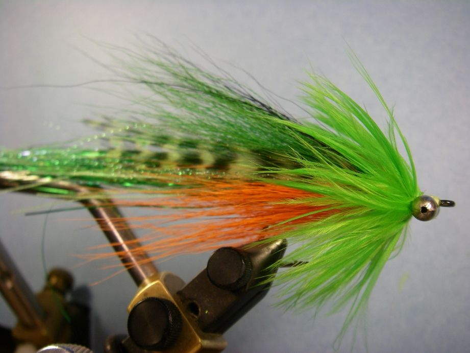 Best 25 fly fishing for bass ideas on pinterest bass for Bass fly fishing