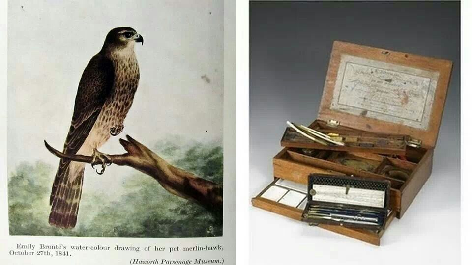 Emily Bronte's water-colour drawing of her pet merlin-hawk, and her water-colour set.