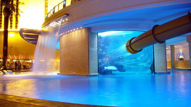 Golden Nugget Pool Shark Tank Las Vegas Night Shot With Images