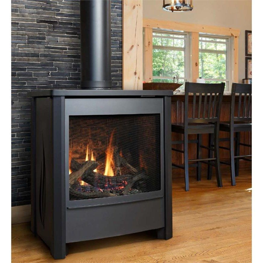 Kingsman Fdv451 Free Standing Direct Vent Gas Stove Direct Vent Gas Stove Free Standing Gas Stoves Gas Stove
