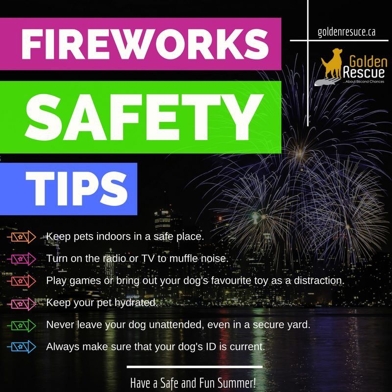 Here are some helpful Fireworks Safety Tips! GoldenRescue