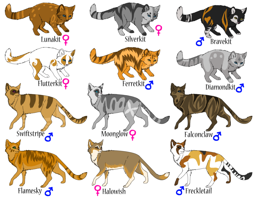 warrior cat pictures and names Warrior cats adoptables