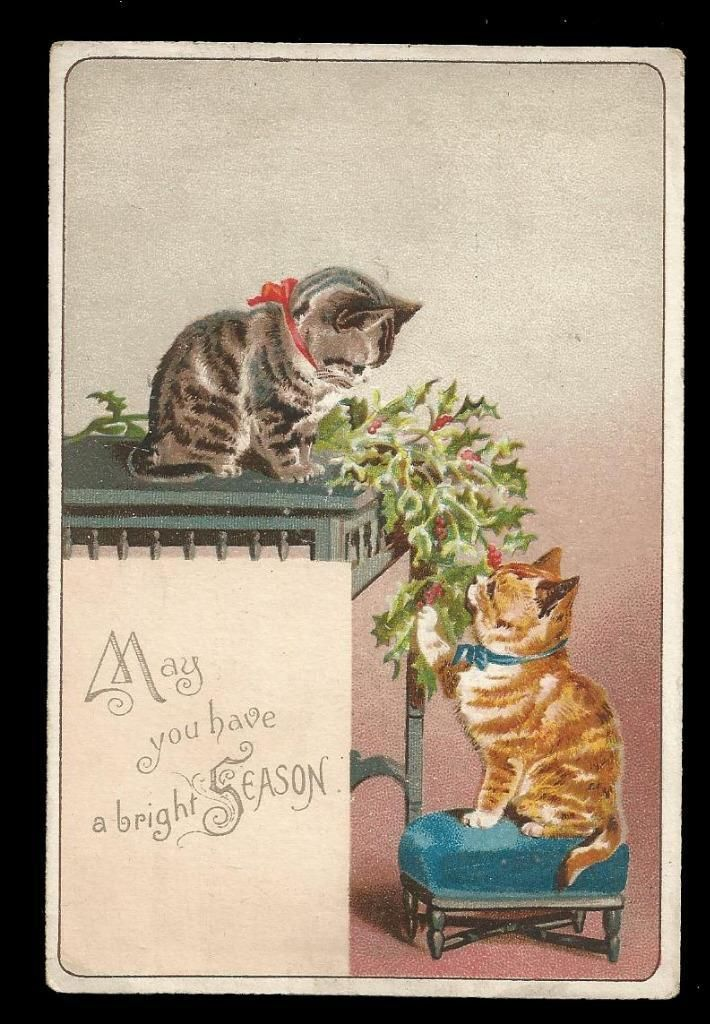 R76 - VICTORIAN CHRISTMAS CARD - CATS PLAYING WITH HOLLY | eBay